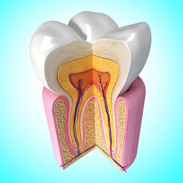 Răng là chìa khóa trong việc chuẩn đoán chứng tự kỉ ở trẻ như thế nào?